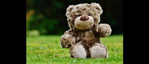 Join us @ Bangor for a Teddy Bear Picnic