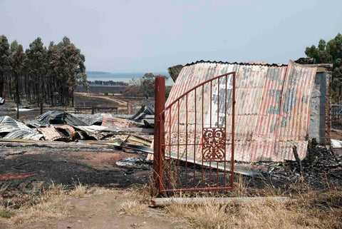 Bangor shearing shed lost in the 2013 bushfires