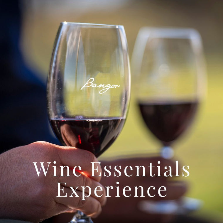 Wine Tour Experiences at Bangor Vineyard Tasmania