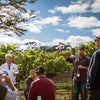 Bangor Wine Tasting in the vines tour Tasmania