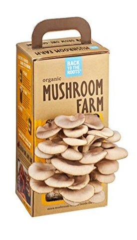Back to the Roots Organic Mushroom Farm