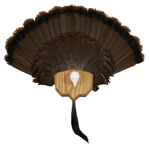 HS STRUT Turkey Fan Plaque - 06972