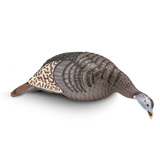 Strut-Lite Feeding Hen Decoy *REBATE OFFER* - Hunters Specialties