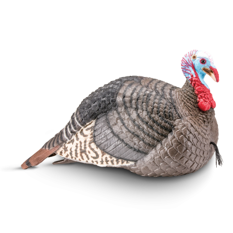 Strut-Lite Jake Decoy Turkey Hunting - Hunters Specialties