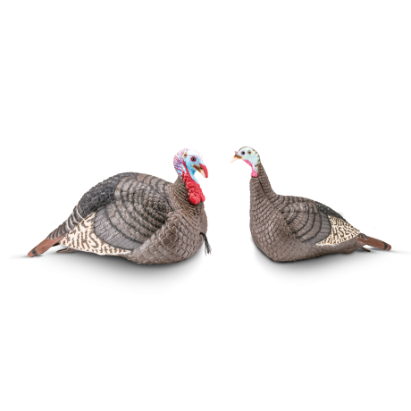 Strut-Lite Jake & Hen Decoy Combo *REBATE OFFER* - Hunters Specialties