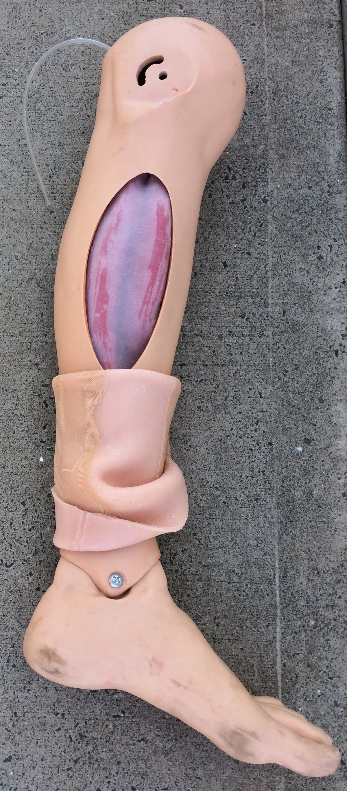 MT405 COMPARTMENT SYNDROME MANIKIN LEG