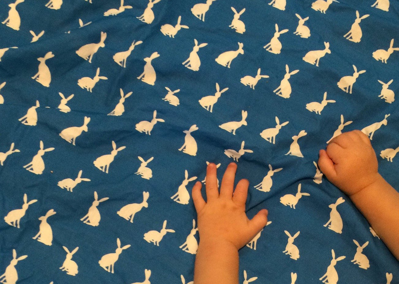 Bunny Rabbit Throw Blanket - Blue Receiving Blanket- Infant Swaddle Blanket- Crib Sheets- Baby Blanket- Woodland Nursery Gender Neutral - Dream Evergreen @DreamEvergreen