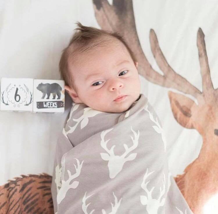 Deer Crib Sheet - Fitted Crib Sheet Buck Nursery Bedding - Orange Blossom Special  @orangeblossomspecial805