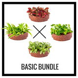 Assorted Plant Sushi Bundles - In Vitro / Botanicaire