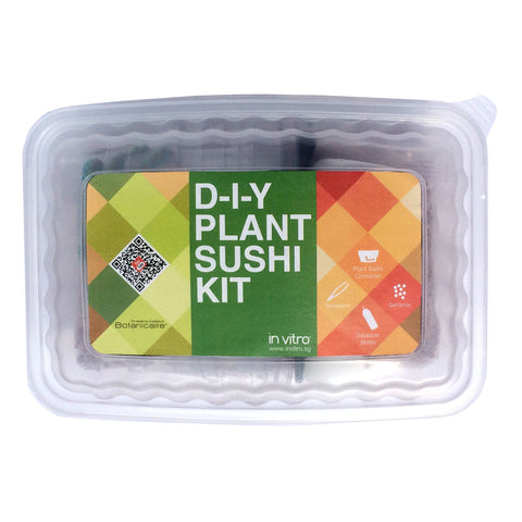 Botanicaire DIY Plant Sushi Kit (4 container sets) - In Vitro / Botanicaire