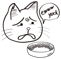the CAT TONGUE, problems with other bowls, saliva, gross, don't want to eat