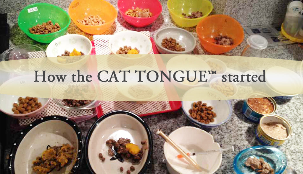 the CAT TONGUE, how the CAT TONGUE started, story of ten cats and owner, birth of the idea, design
