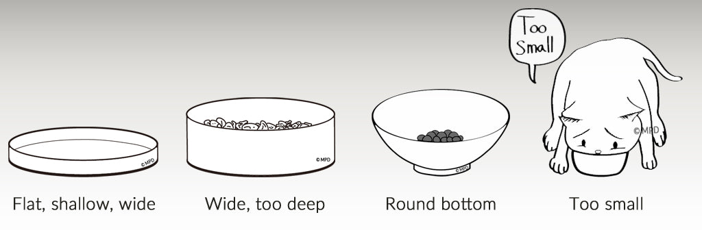 the CAT TONGUE, problems with other bowls, flat, shallow, wide, too deep, round bottom, too small
