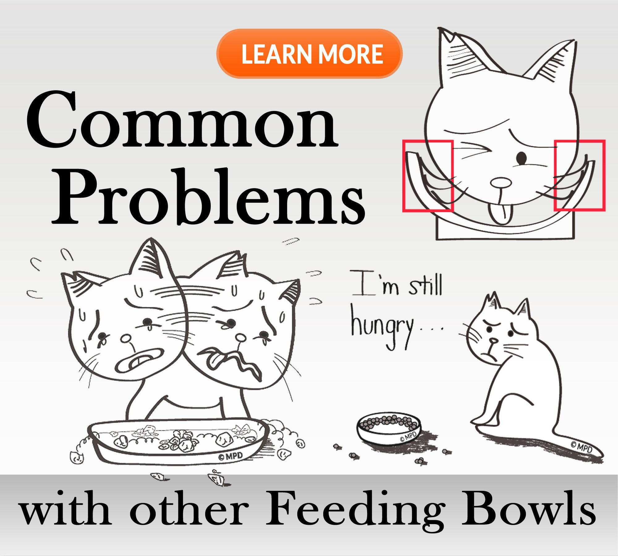 Common Problems with other feeding bowls