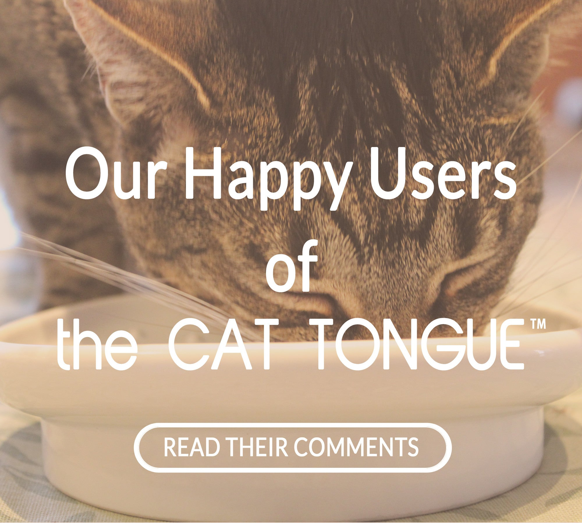 Our Happy User comements