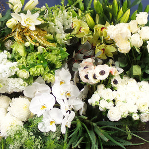 Bouquets /Dots Selection - Pure Essence