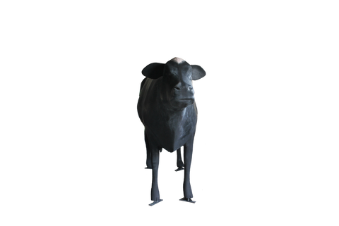 Giant Fibreglass Cow - Tourist Attraction - Business Opportunity