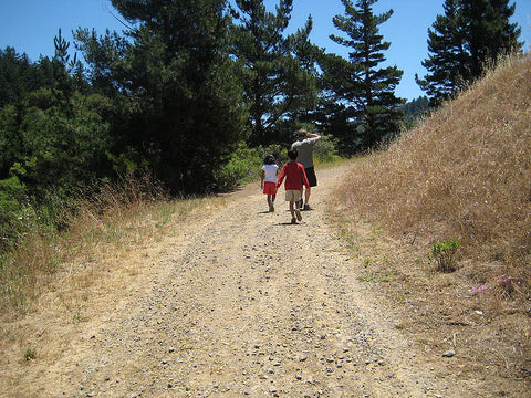 How To Plan A Day Hike With The Kids