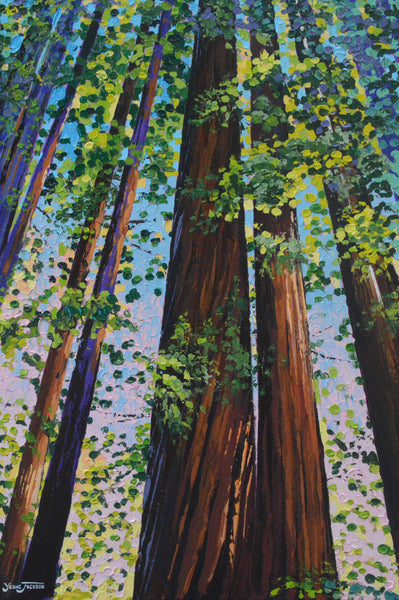 Canvas Print - Redwood Splendor
