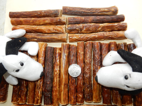 Beef Sticks - MEDIUM - 150mm long! Great chewing - one the most popular products!