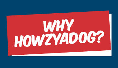 Why Howzyadog