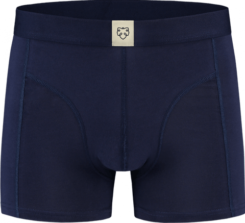 Harm Boxer Brief - A-dam