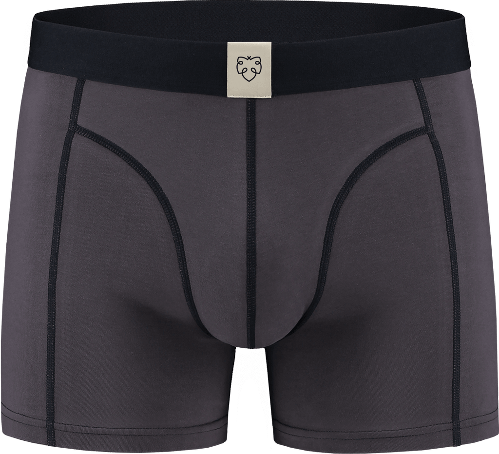 Koert Boxer Brief - A-dam