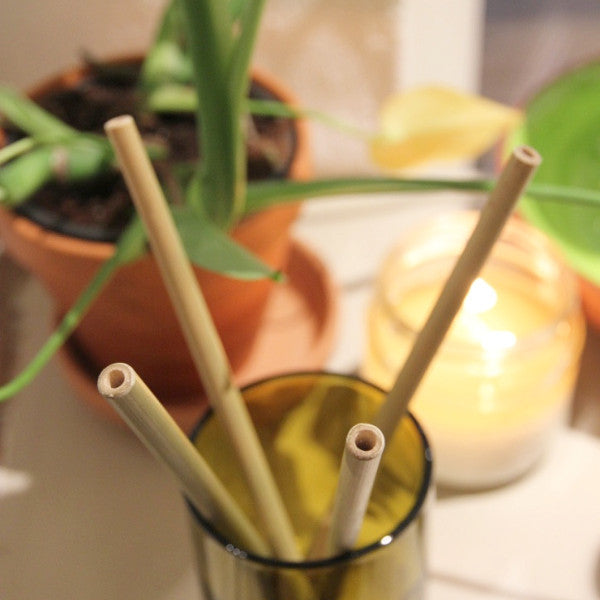 Bamboo Straw Single - Clean Planetware