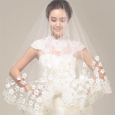 Stunning Short  Lace Applique Wedding Veil With Beadings, WV0102