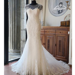 Sexy Long Sleeves Mermaid Lace Wedding Party Dresses Unique Back Design Bridal Gown WD0035