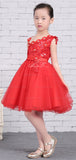 Red Tulle Unique One Shoulder Applique Flower Girl Dresses, FGS137