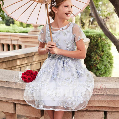 products/Stunning_Blue_Organza_Lace_Round_Neck_Short_Sleeve_Flower_Girl_Dresses_FGS086-1.jpg