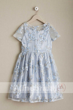 Stunning Blue Organza Lace Round Neck Short Sleeve Flower Girl Dresses, FGS086