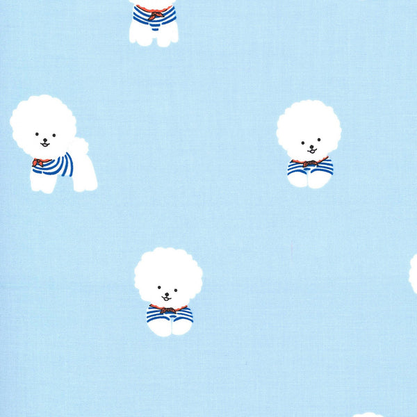BICHON FRISE Sailor
