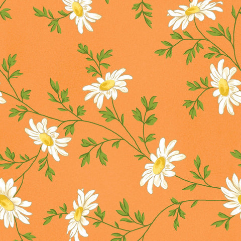 FRESH AS A DAISY Miniature Daisies Orange - NEW ARRIVAL
