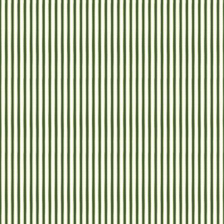 ANNE OF GREEN GABLES - KINDRED SPIRITS Ticking Stripe Dark Green