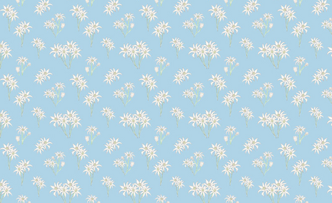 SWEET BILBY Wildflowers Blue - NEW ARRIVAL