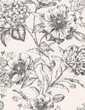 97834 Cordelia is a beautiful Black / White Floral Wallpaper from Holden Decor