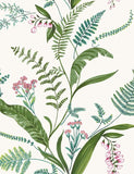 98542 Cembra is a beautiful Green / Pink Floral Wallpaper from Holden Decor