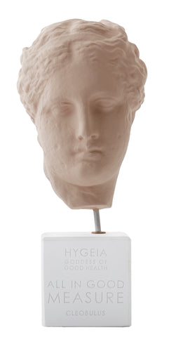 Head of Hygeia Statue, The Courtauld Gallery - CultureLabel