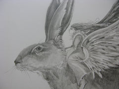 Angel Hare, Original pencil drawing, Jackie Morris