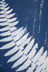 Fern Frond, Angela Easterling Alternate View