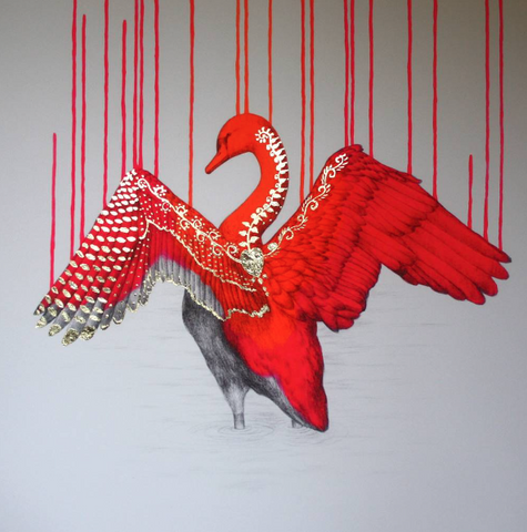 Beautifully Wild, Louise McNaught - CultureLabel