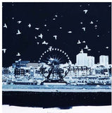 Starlings Brighton, Bob Marshall - CultureLabel - 3