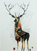 King O' The Highlands, Graham Carter - CultureLabel - 1