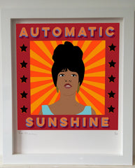 Automatic Sunshine (Mary Wilson), Mr Woo Woo Alternate View