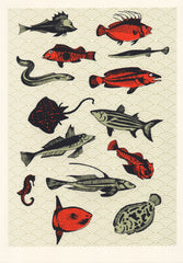 Orange Japanese Fish, Eliza Southwood