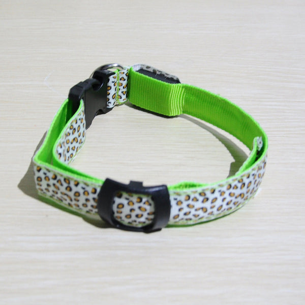 Fahionable Nylon Pet LED Collars Offer