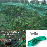 Plants Trees Mesh cover For Big Areas to Protect