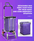 Trolley Carry Portable Folding Frame And Bag